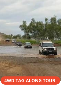 Pilbara 4WD tagalong tour