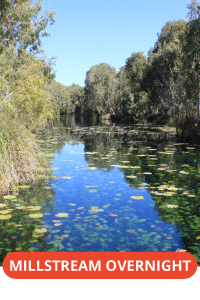 Millstream – Chichester National Park Overnight Tour